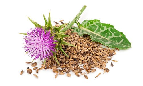 Milk Thistle is an ingredient in Superfood Tabs