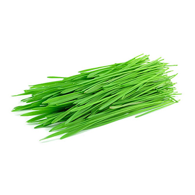 Wheat Grass is an ingredient in Superfood Tabs