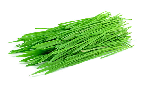 Wheatgrass is an ingredient in Superfood Tabs